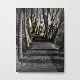 Path of Shadows Metal Print