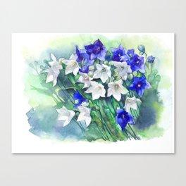 Campanula watercolor flowers, aquarelle bellflowers Canvas Print