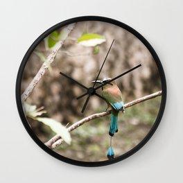 Rainforest Bird Wall Clock