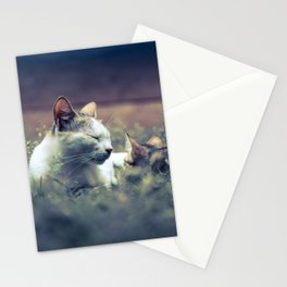 cat and kitten Stationery Cards