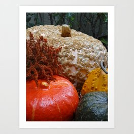 Autumn Jewels Art Print