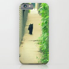 Black Cat With Gangway Ivy  iPhone 6s Slim Case