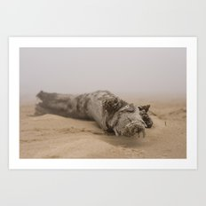 Fog On The Beach Art Print