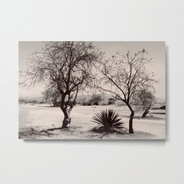 The Dry Season Metal Print