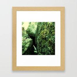 Quiet Demise Series 04 Framed Art Print