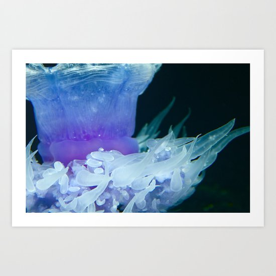 Show in the Deep Art Print