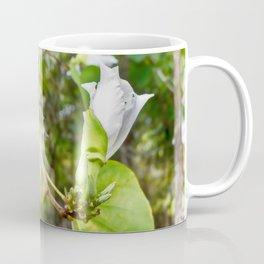 Delicate butterfly tree flower Coffee Mug