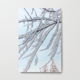 Winter Branches In The Snow Metal Print