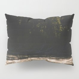 Yellowstone National Park - Bison  Pillow Sham
