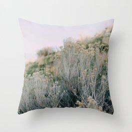 Desert Blush Throw Pillow