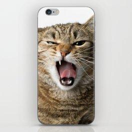 Crazy Cat iPhone Skin