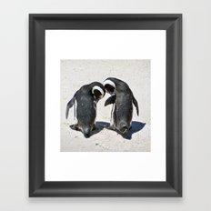 Penguins of Boulder Beach Framed Art Print