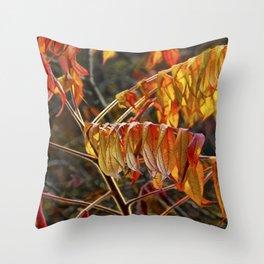 Fall Sumac Leaves during a Michigan Autumn Throw Pillow
