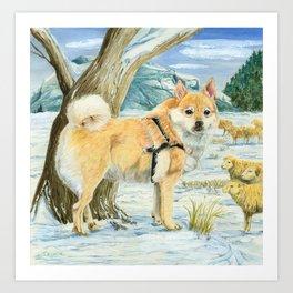Norwegian Buhund Working Art Print