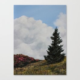 Rhododendrons at Roan Mountain Canvas Print