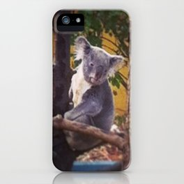 Kozy Koala 2 iPhone Case
