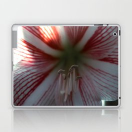 Botanical Gardens - Red Orchid #175 Laptop & iPad Skin