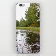 Wapato Park rain iPhone & iPod Skin