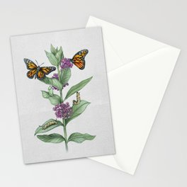 Monarch Butterfly Life Cycle Stationery Cards