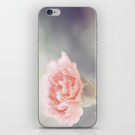 Carnation in Pink iPhone Skin