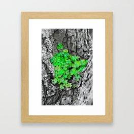 Clover Cluster Framed Art Print