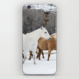 Carol Highsmith - Wild Horses iPhone Skin