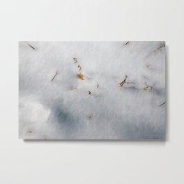Winters Calm Metal Print