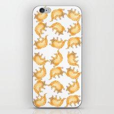 Ginger Kitten A090 iPhone & iPod Skin