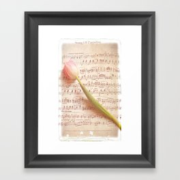 Tulip Music  Framed Art Print