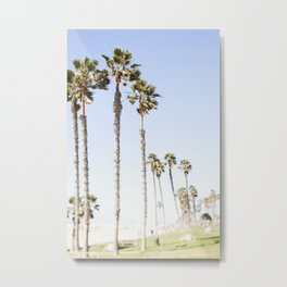 Palm Trees Swaying in the Breeze Metal Print