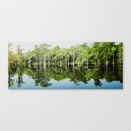 Florida Beauty 8 Canvas Print