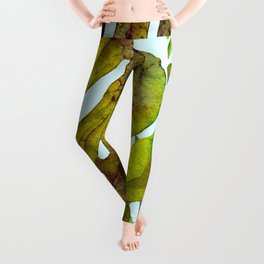 Prepared Monstera Leggings