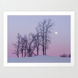 Winter comes to Sandbanks Art Print