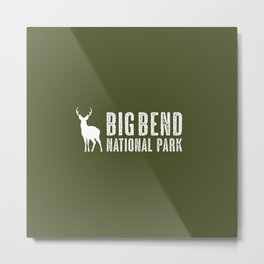 Deer: Big Bend National Park, Texas Metal Print
