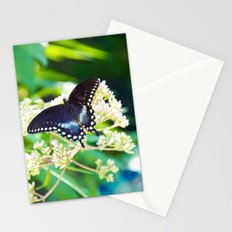 River Run Butterfly Stationery Cards
