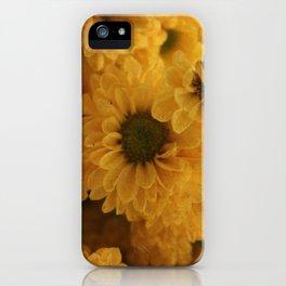 Ox Eye iPhone Case