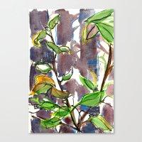 big sur Canvas Prints featuring Big Sur by Briana Kranz