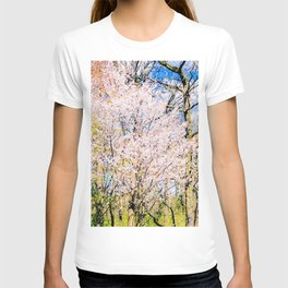 Blooming Trees In The Park On A Sunny Day Of Spring T-shirt