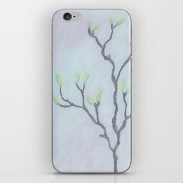 Magnolia Buds on Branches iPhone Skin