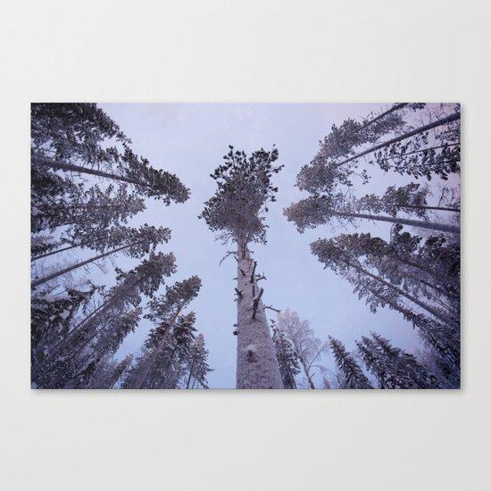 Snow Trees Please Canvas Print