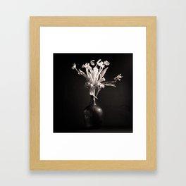 Old White Tulips Framed Art Print