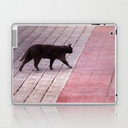 Cat Walking  6589 Laptop & iPad Skin