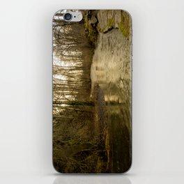 Rios de Oregon 2 iPhone Skin