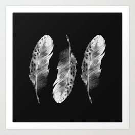Three feathers on black background Art Print