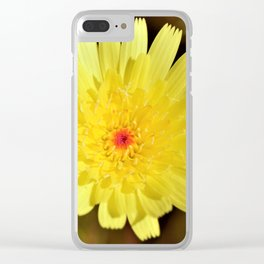 Yellow Desert Bloom by Reay of Light Photography Clear iPhone Case