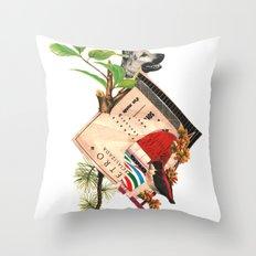 Etro Throw Pillow