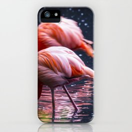 Pink flamingos in a pond iPhone Case