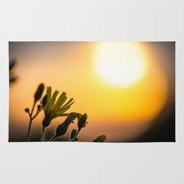Sunset FLower Rug