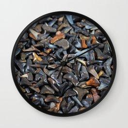 Florida - Fossil Shark Teeth Wall Clock