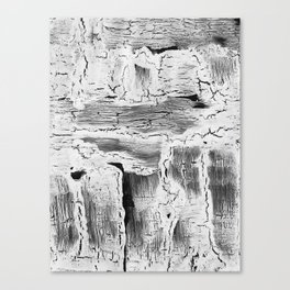 Abstract Artwork Greyscale #2 Canvas Print